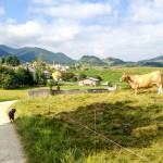 Wandelen rondom Camurac
